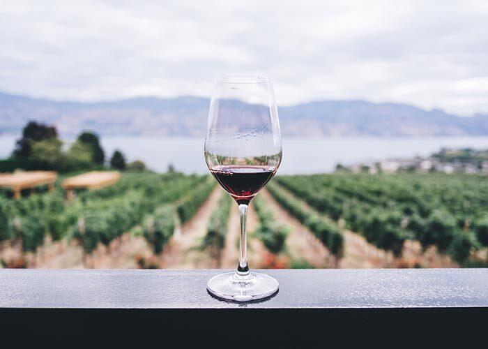 wine tour napoli